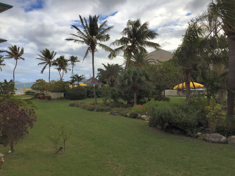 Vacation Rentals Colony Cove St Croix