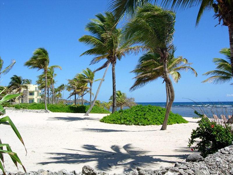 Vacation Rentals At Pelican Cove St Croix Usvi