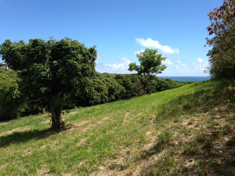 Land for Sale on St Croix